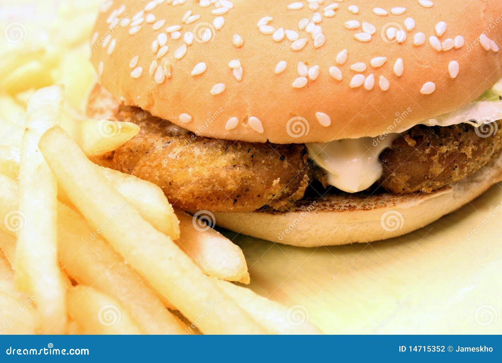 Fast food - hamburguer e fritadas