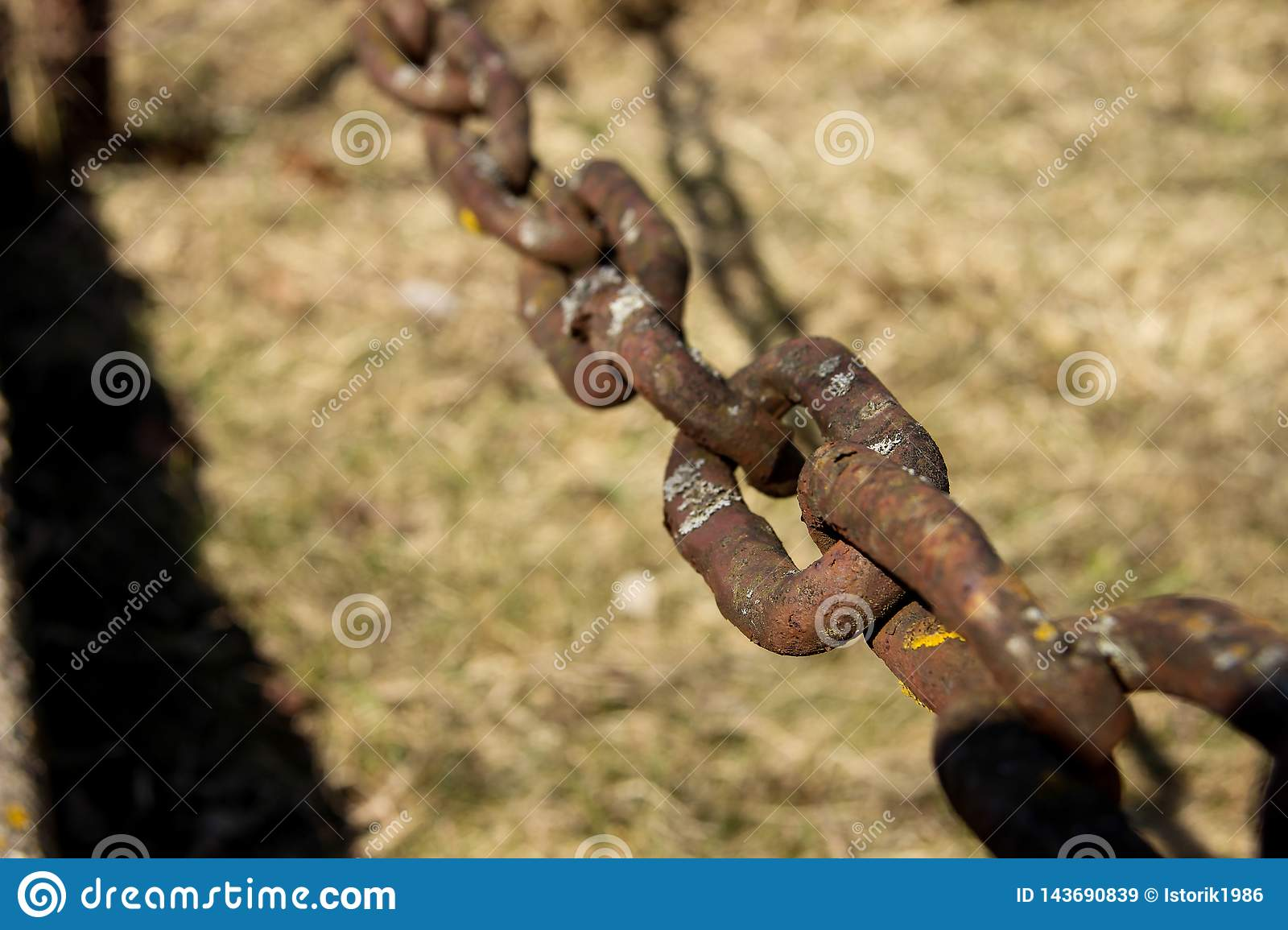 The fastening elements of the chain. Chain links