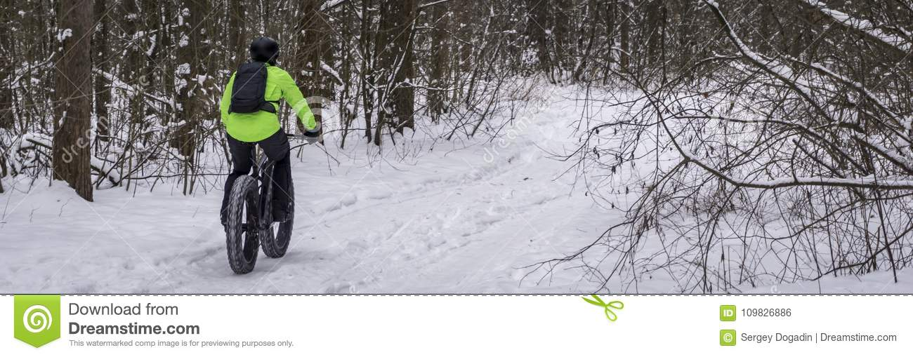 Fat bike also called fat bike or fat-tire bike - Cycling on large wheels in the winter forest.