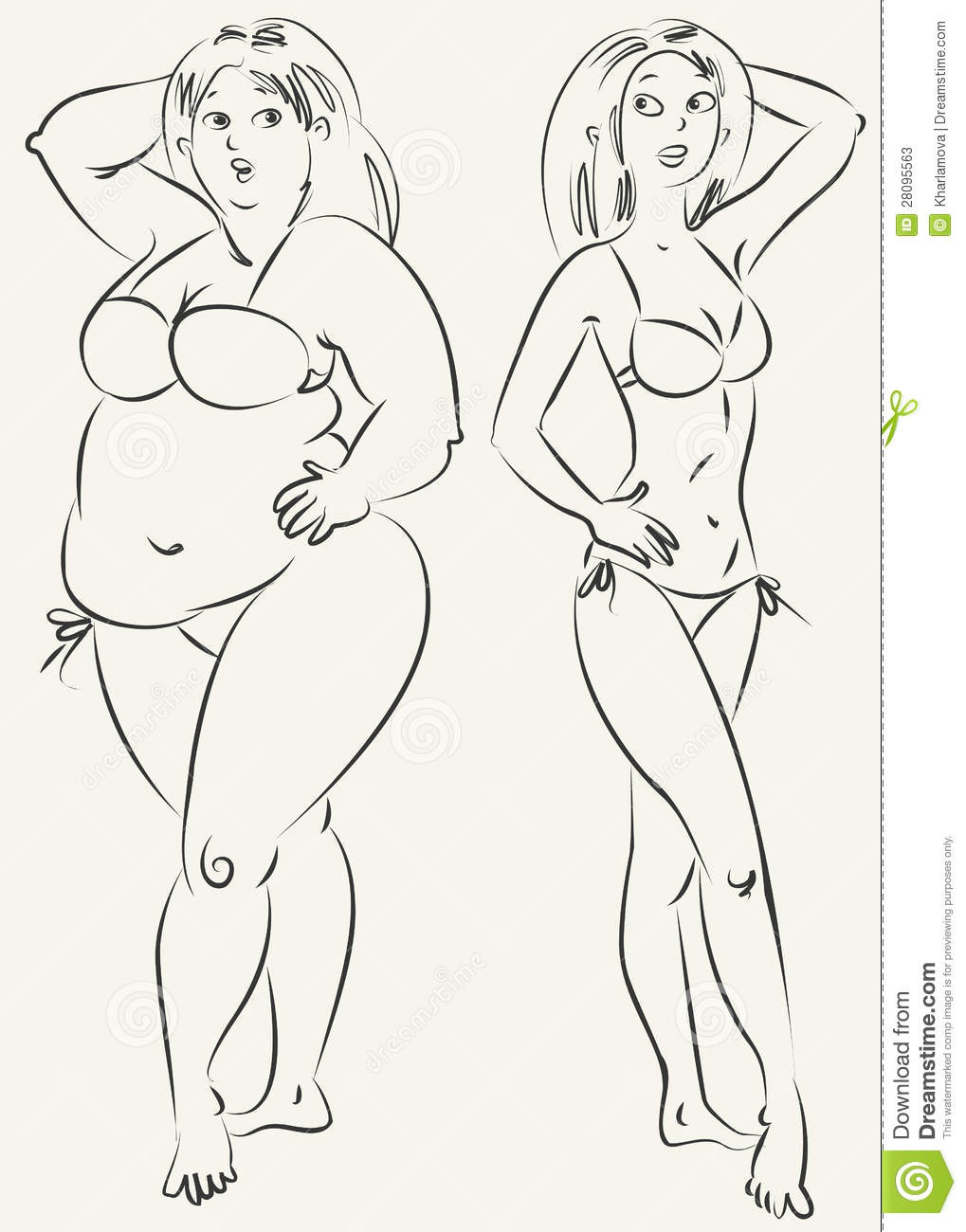 Fat And Thin Woman Vector Stock Photos Image 28095563