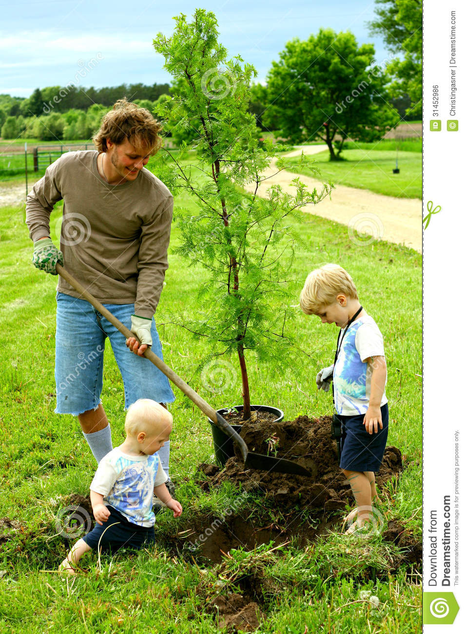 Father And His Children Planting Tree Stock Photo - Image ...