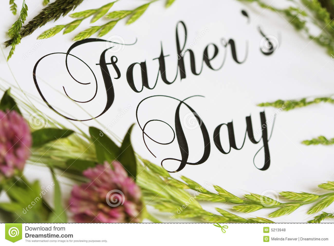 Fathers Day Card Stock Photo Image Of Holiday Grain 5213948