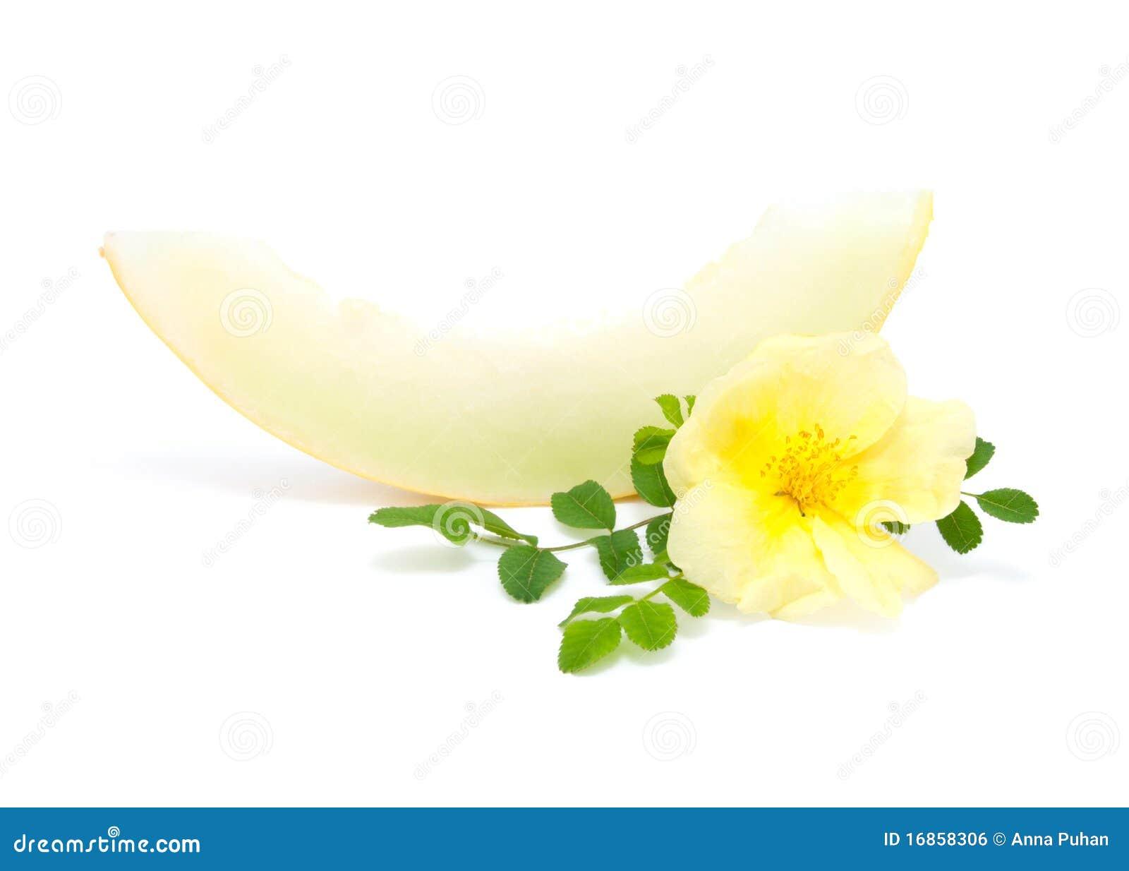 Fatia de melão amarelo