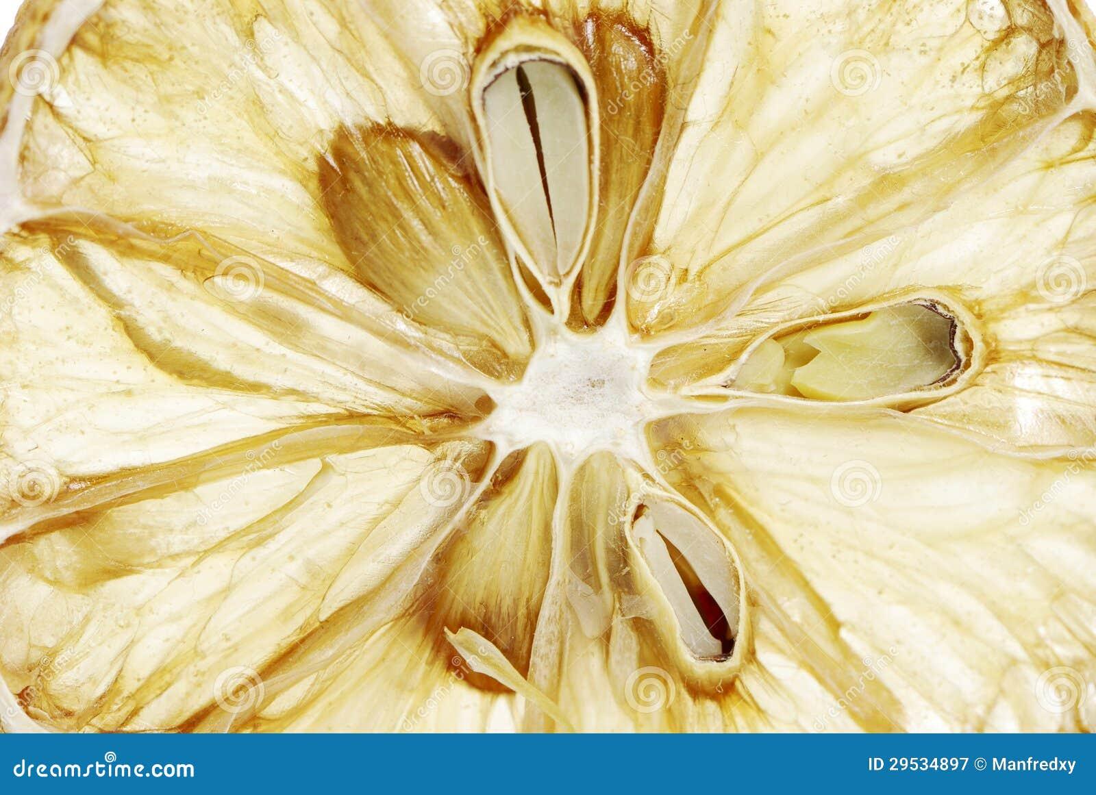 Fatia secada do limão