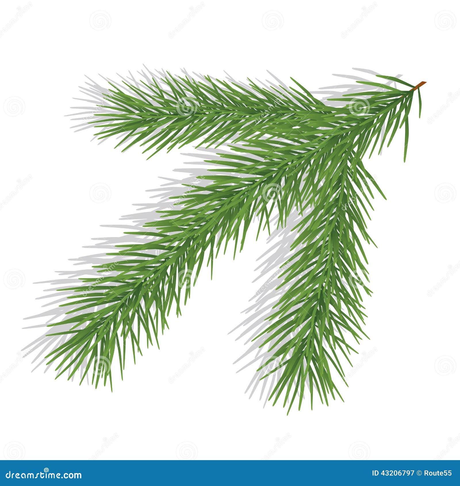 Download Fatta av evergreen vektor illustrationer. Illustration av medf8ort - 43206797