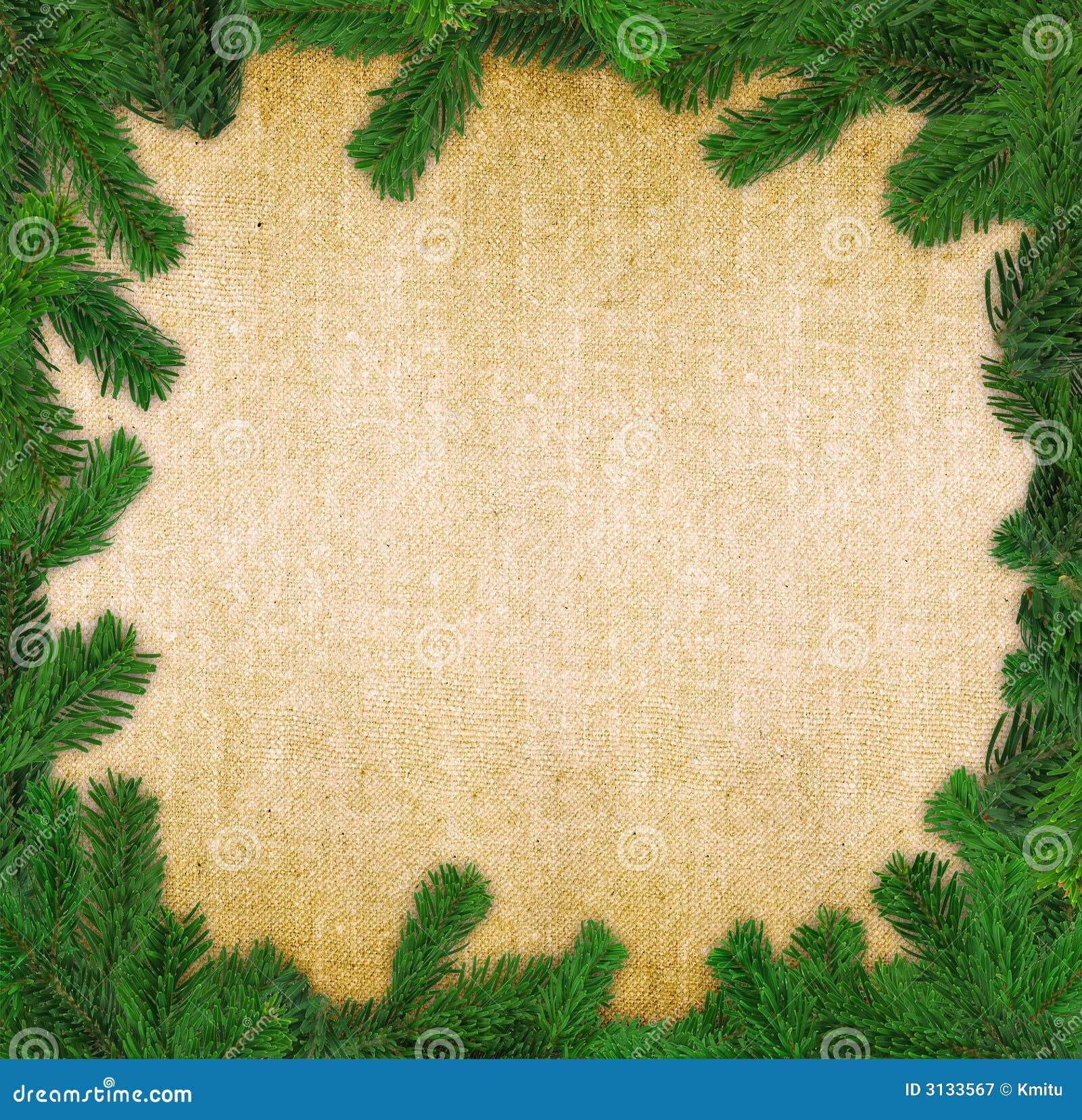 Fattar den spruce fyrkanten för ramen
