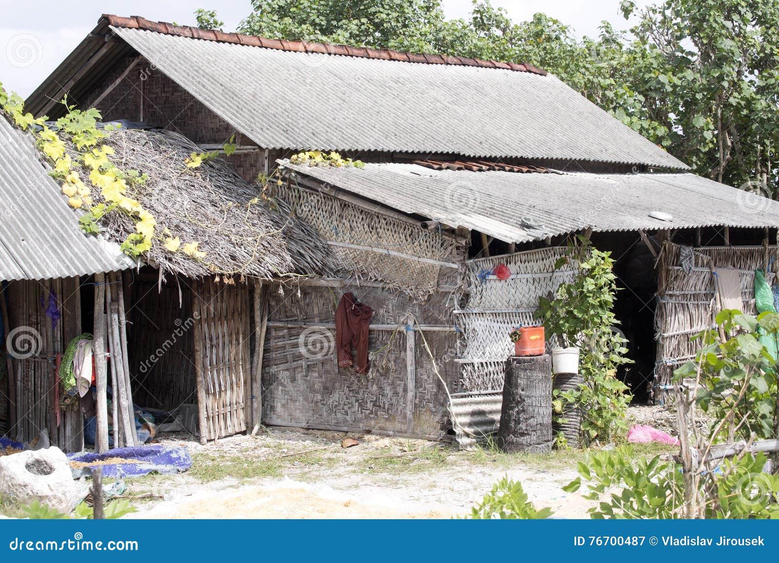 Fattiga kojahavsväxtihopsamlare, Nusa Penida, Indonesien
