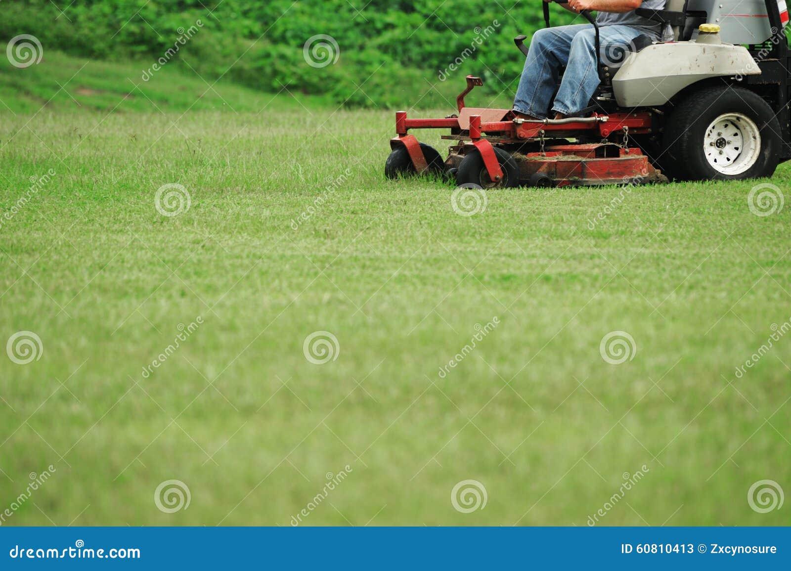 Fauchage de la pelouse