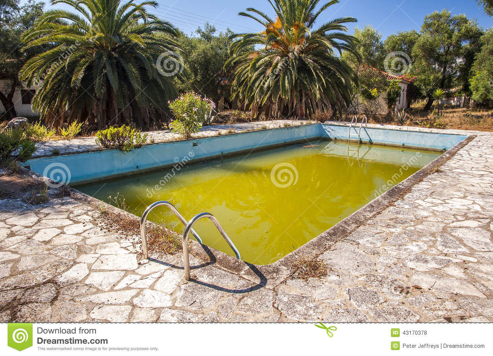 Fauliges grünes Wasser in verlassenem Swimmingpool