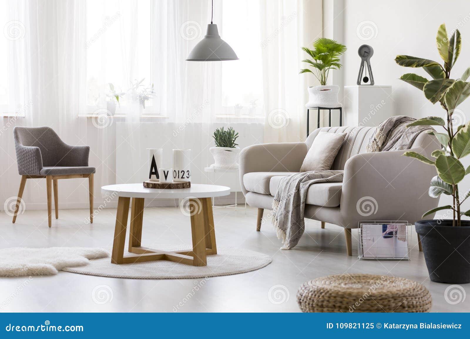 Fauteuil Dans Le Salon Confortable Image stock - Image du coaster ...