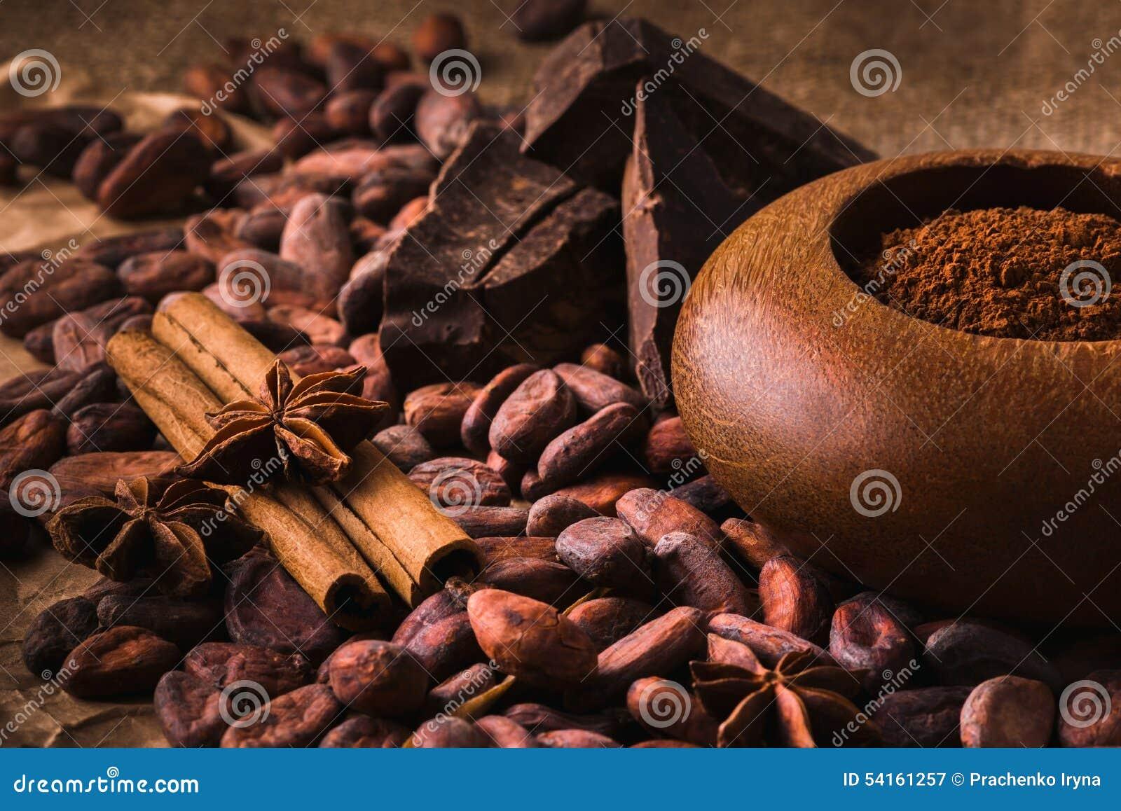Fave di cacao crude, cioccolato nero delizioso, bastoni di cannella, sta