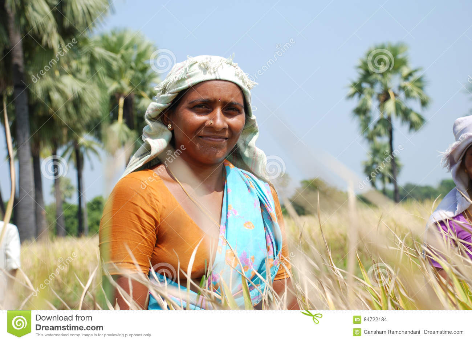 Fazendeiro fêmea
