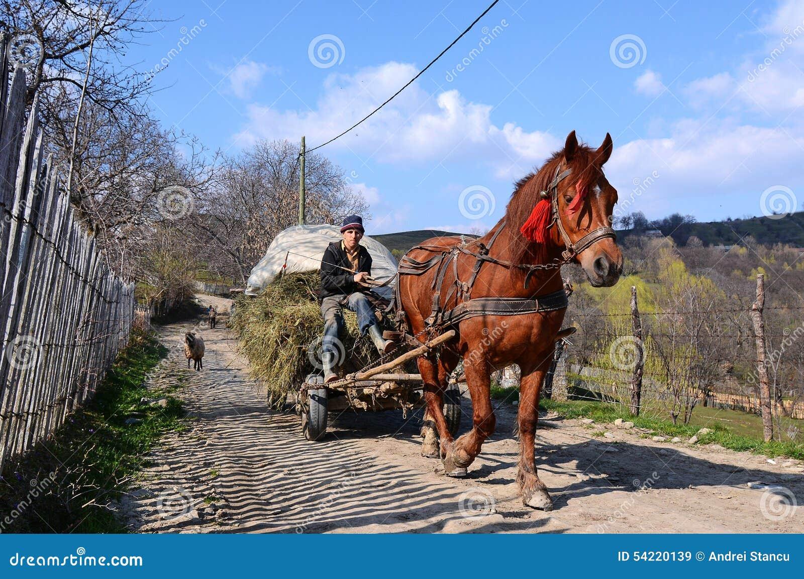 Fazendeiro romeno com cavalo e transporte
