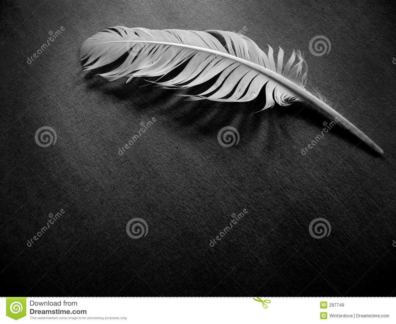 A Feather Alone