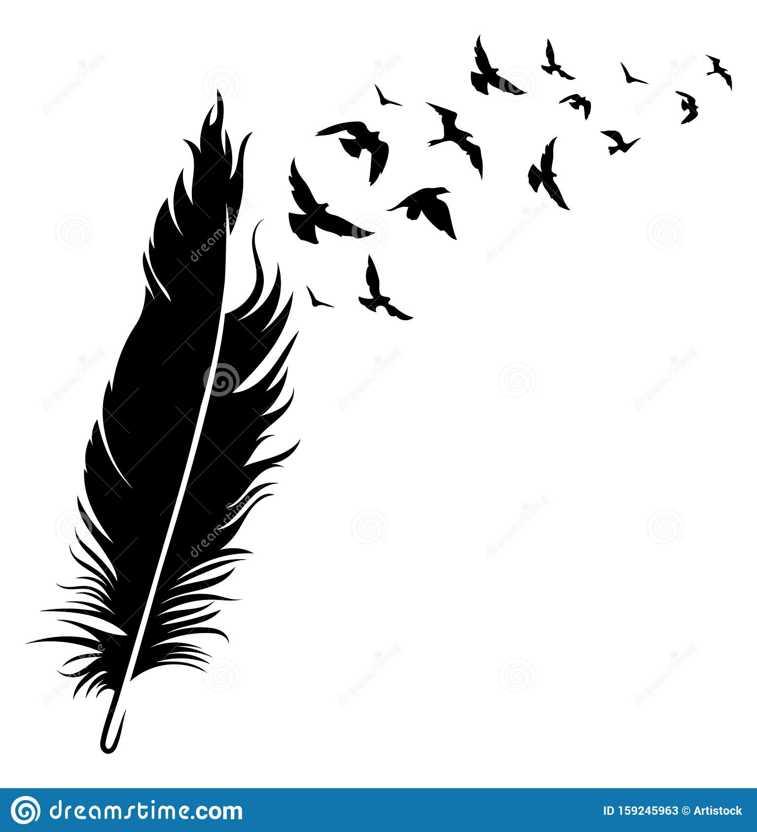 Feather And Birds Black And White Vector Illustration Of Stylized