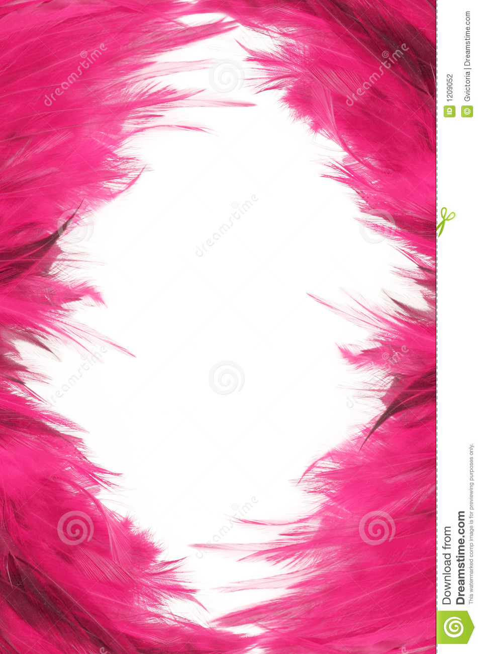 Feather Borders Stock Photography Image 1209052