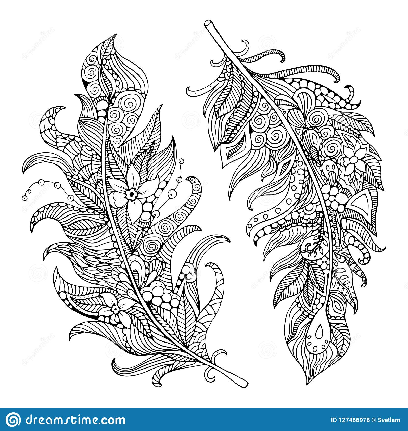 Feather coloring page. stock illustration. Illustration of animal ...
