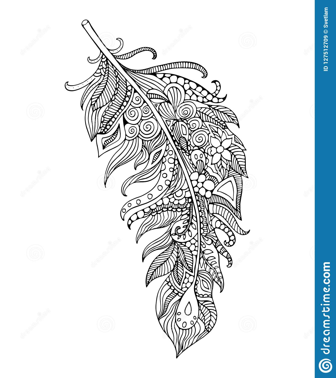 feather coloring page handdrawing feather stock