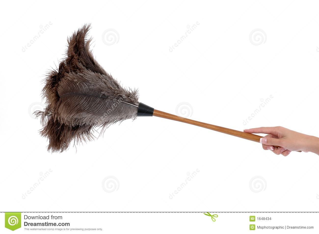 Feather Duster Stock Images Image 1648434