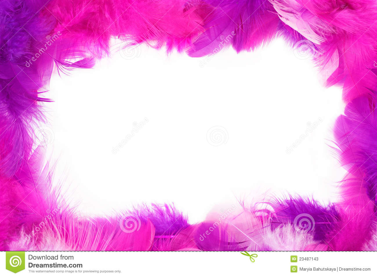 feather frame stock image image of feather pink gentle