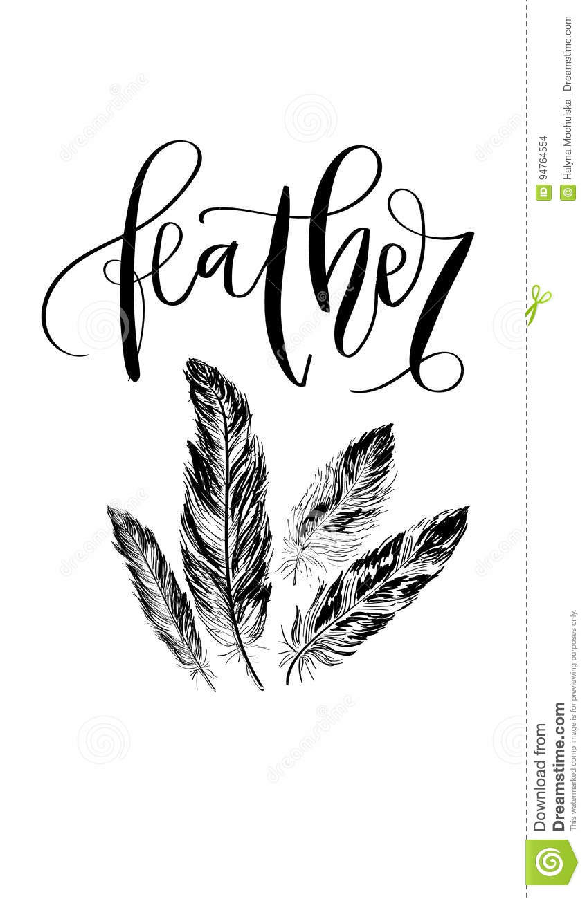 feather hand drawn lettering in modern calligraphy