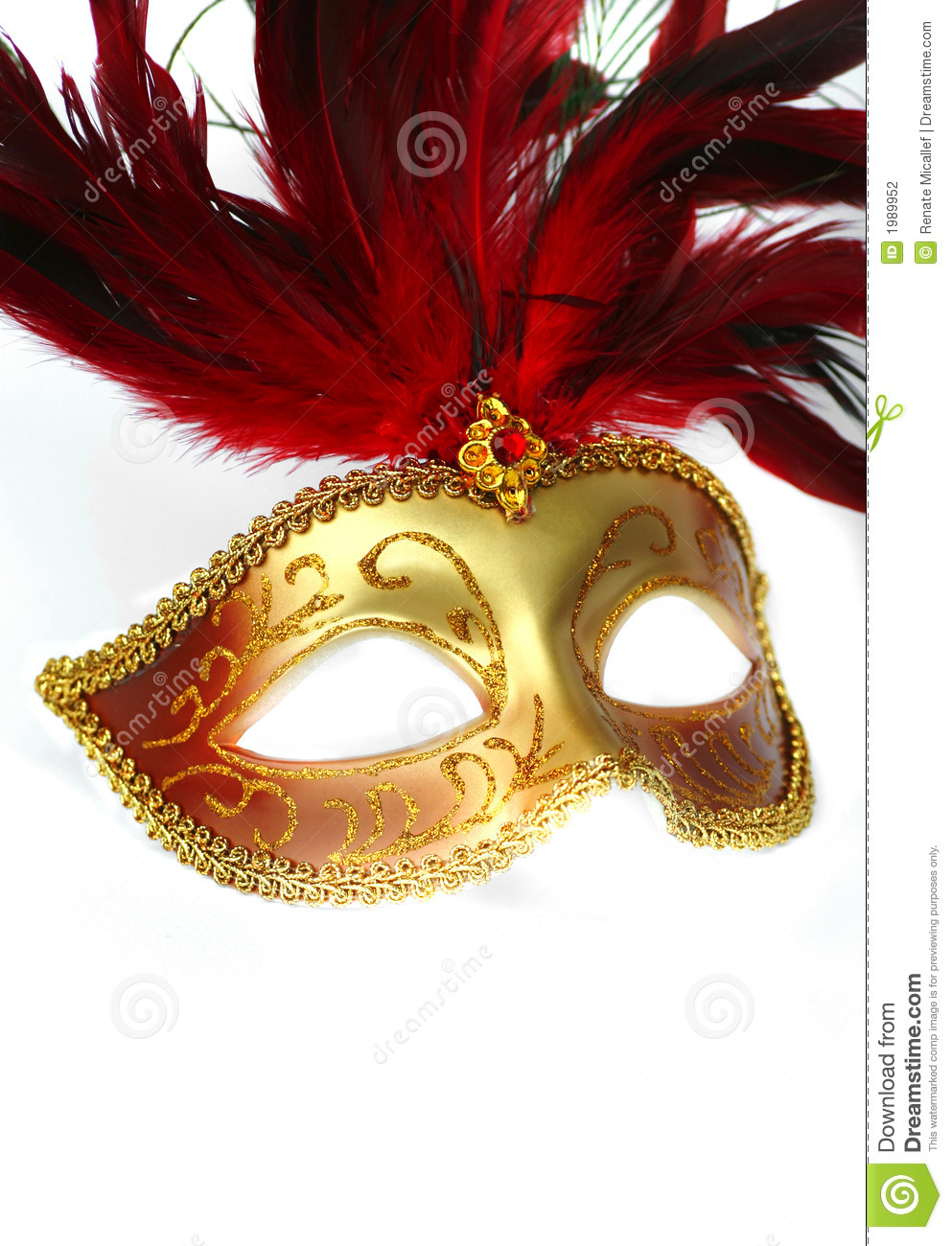 Feathered Fancy Dress Mask