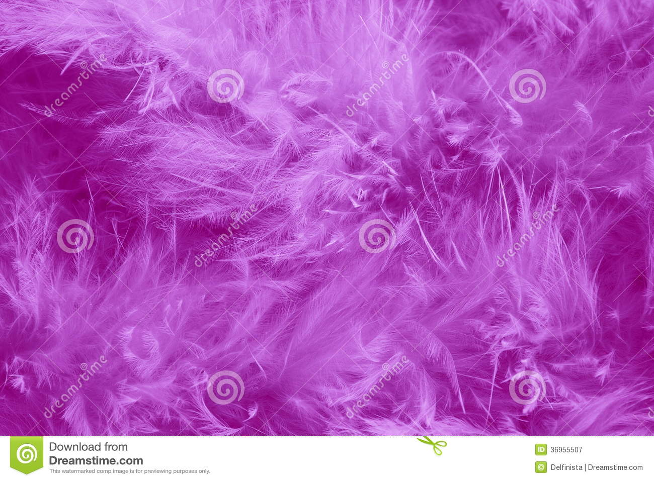 Feathers Purple Background - Romantic Stock images