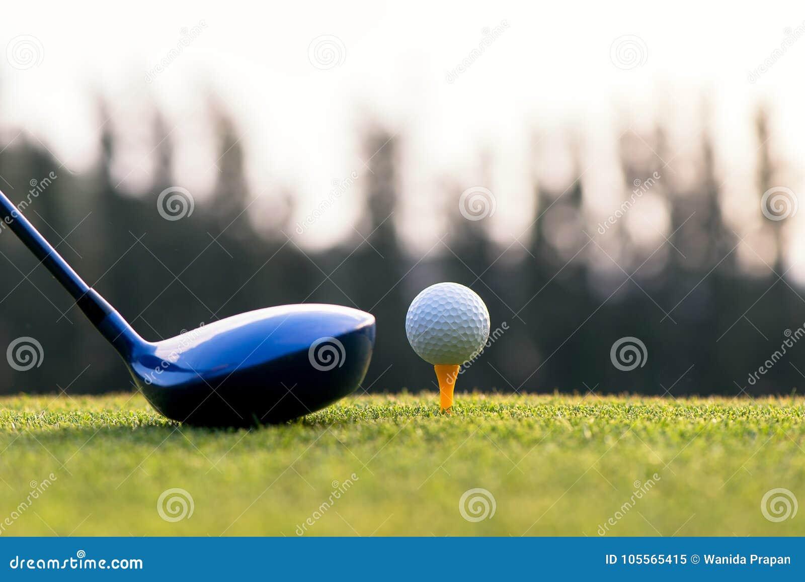 Feche acima da bola de golfe e do motorista, jogador que faz o T do balanço do golfe fora no tempo verde da noite do por do sol,