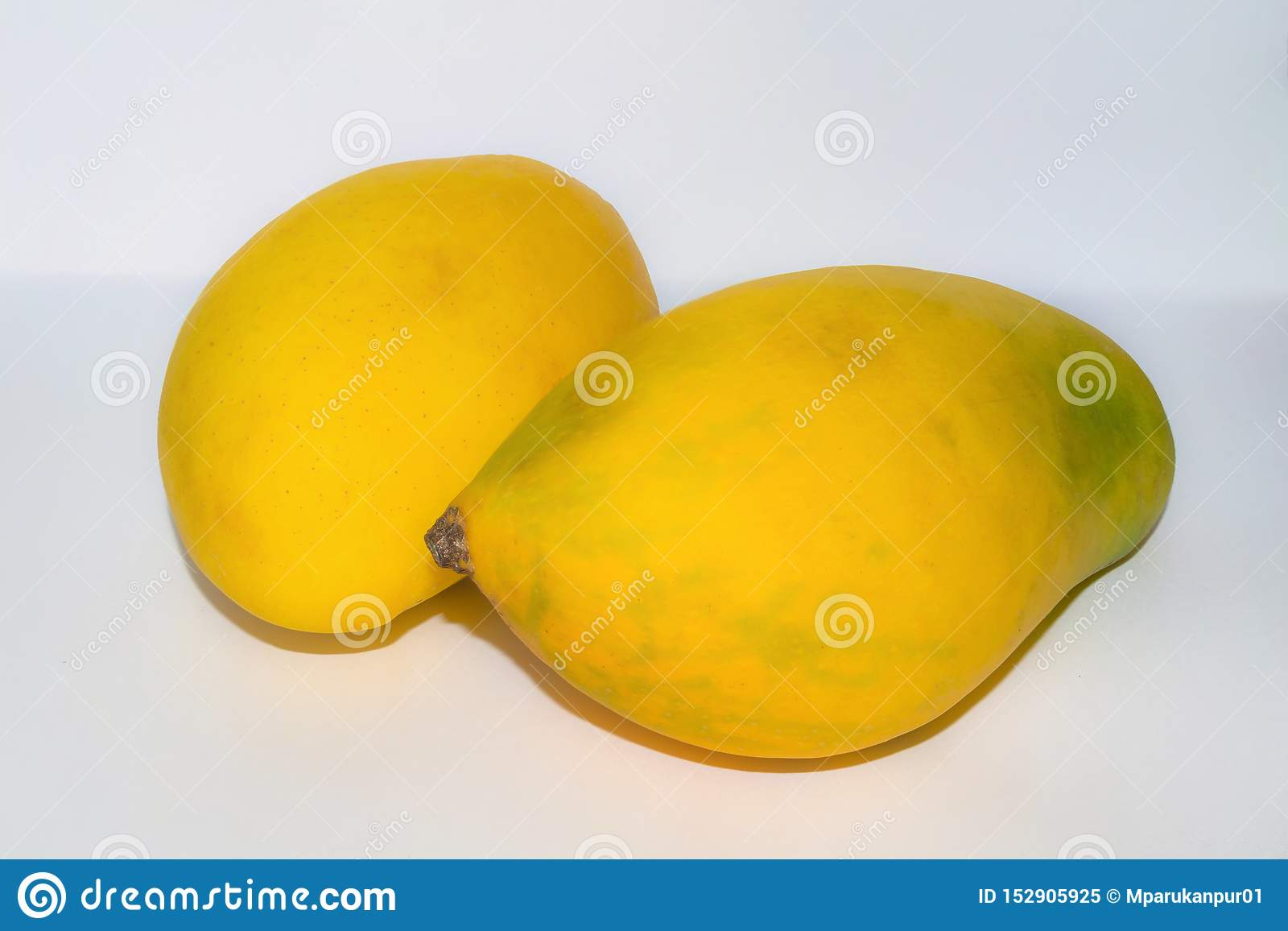 Feche acima de duas manga maduras frescas