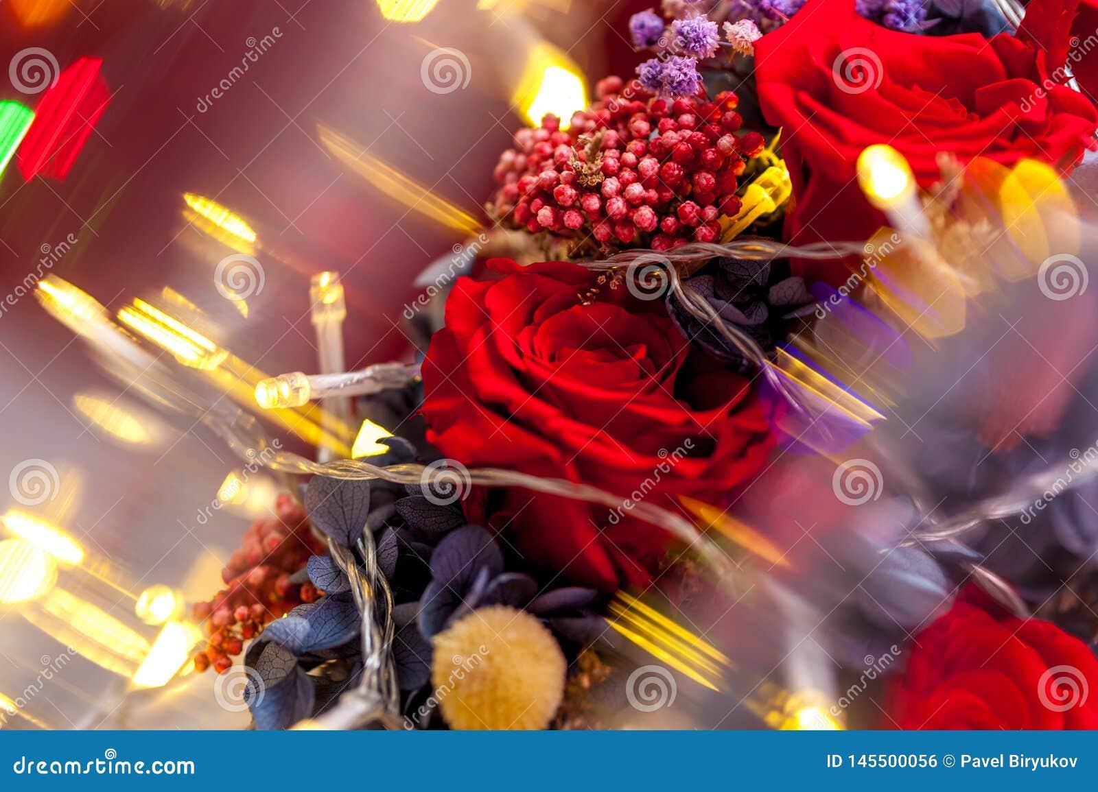 Feche acima de uma rosa vermelha com fest?o amarela
