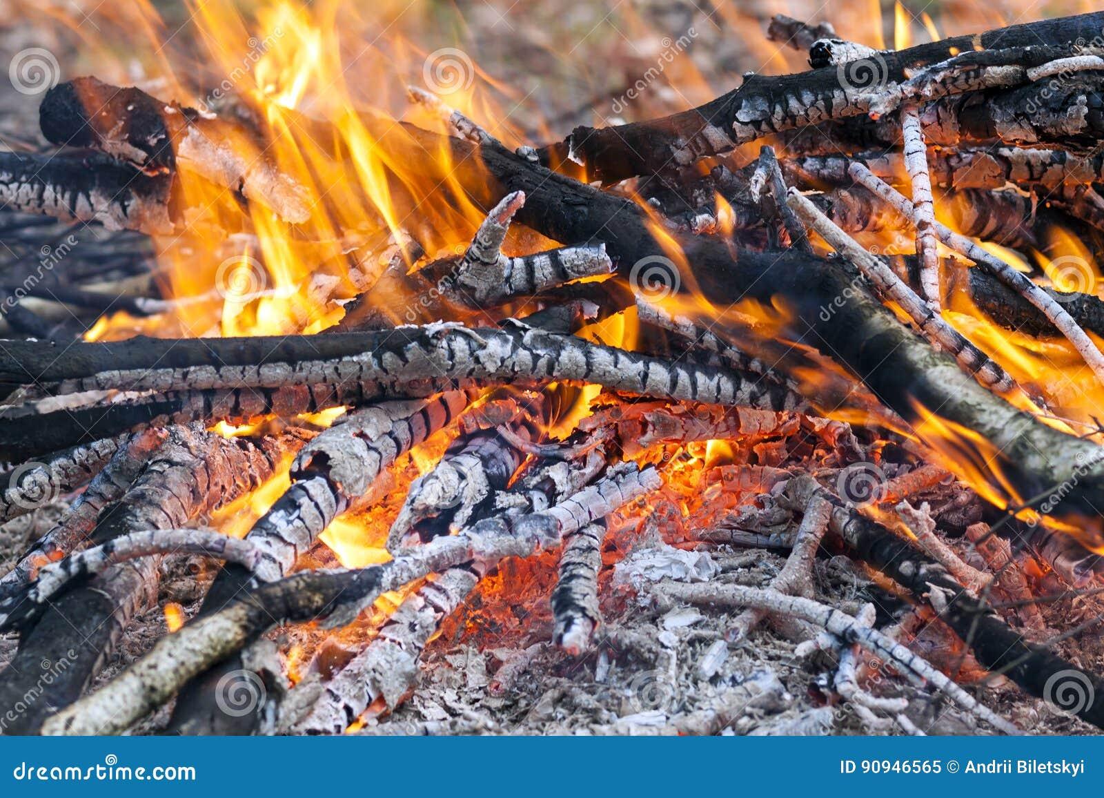 Feche acima do carvão de madeira do fogo ardente quente