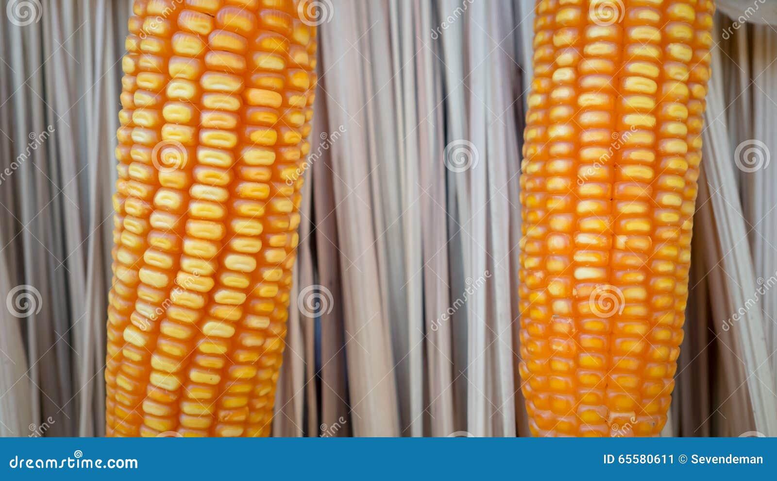 Feche acima do milho