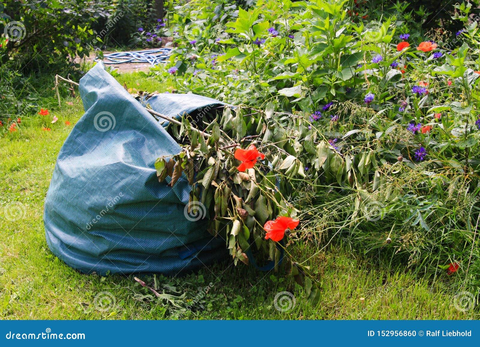 Feche acima do saco com desperdício do jardim na grama verde com as flores durante a jardinagem