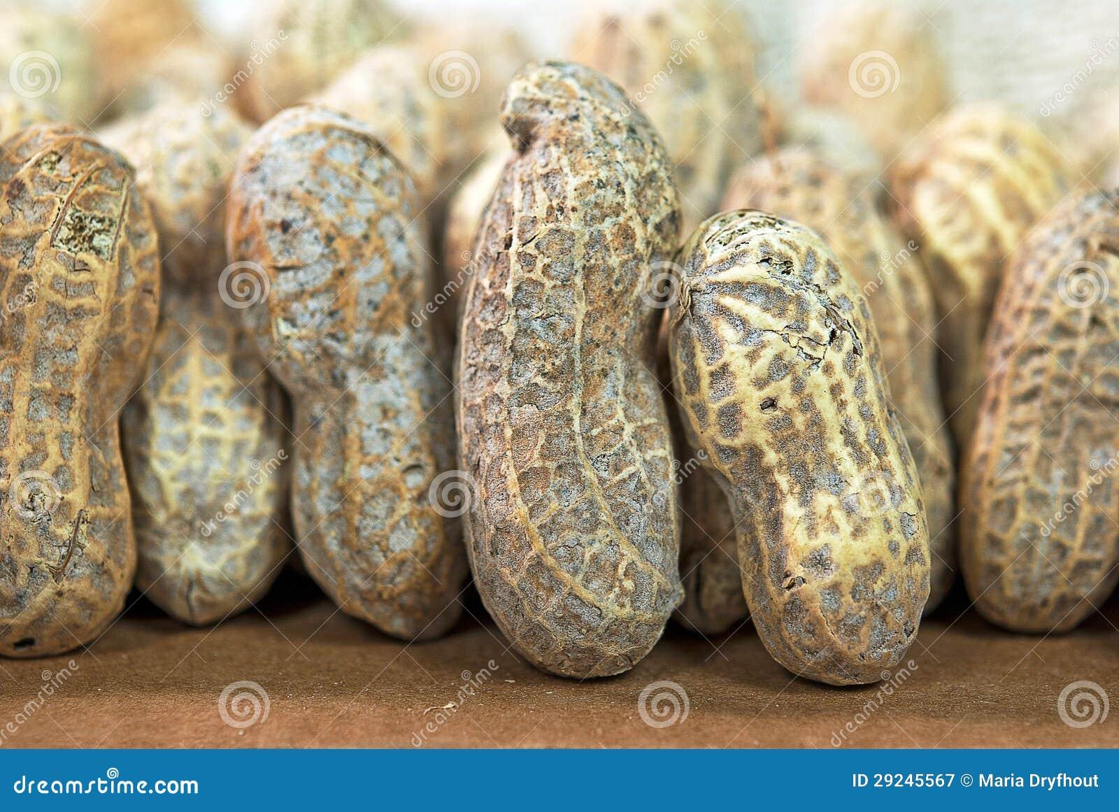 Download Feche acima dos amendoins imagem de stock. Imagem de multidão - 29245567