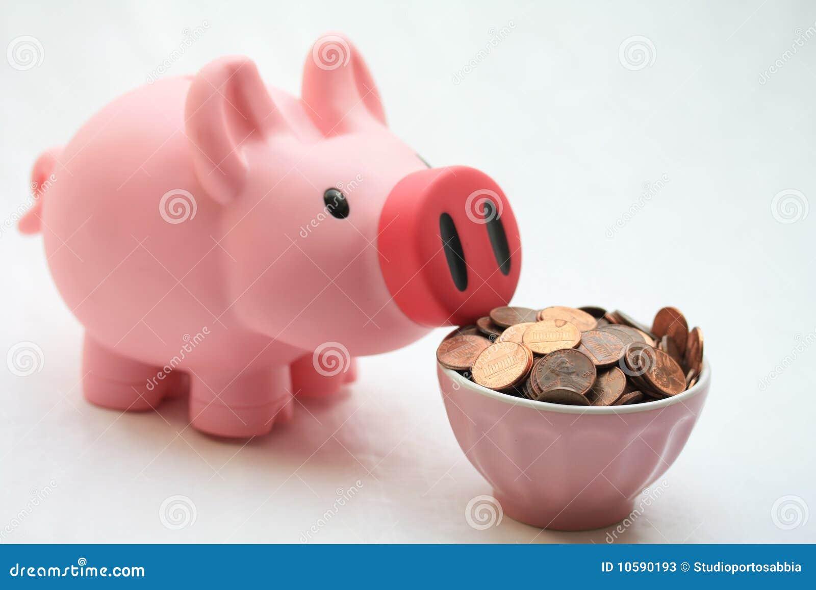 Feeding your piggy bank