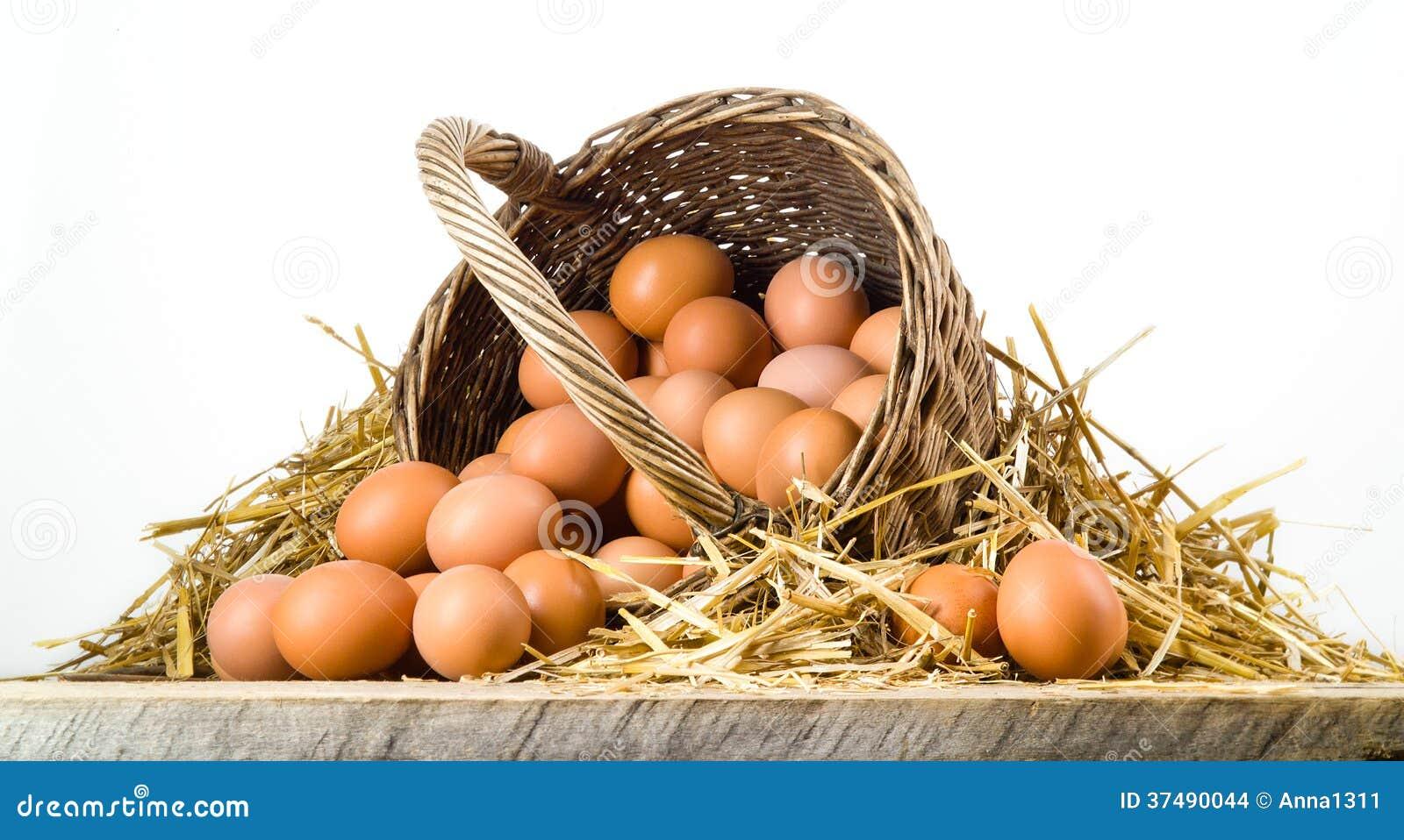 Fega ägg i den isolerade korgen. Organisk mat