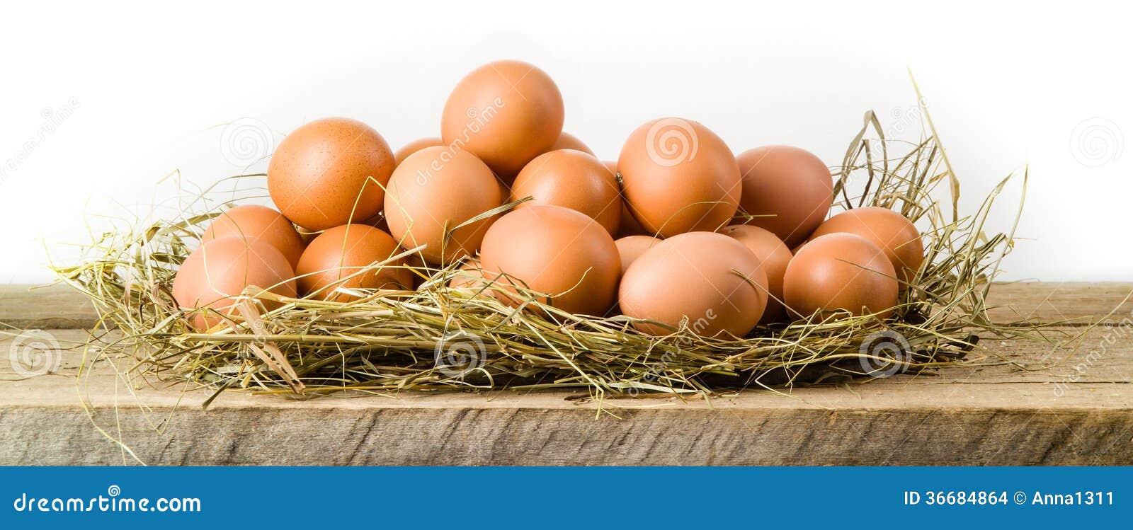 Fega ägg i hörede. Isolerat. Organisk mat