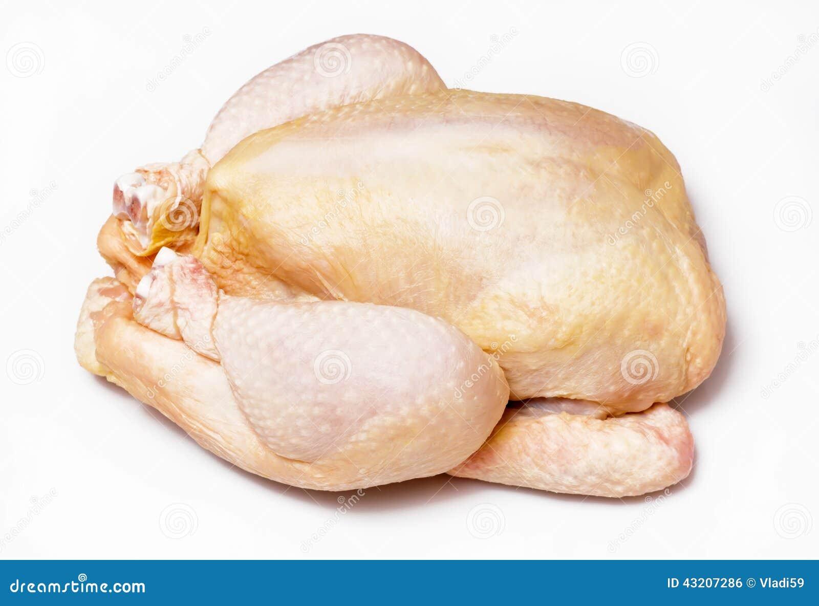 Download Fegt rått arkivfoto. Bild av fågel, rått, matställe, stek - 43207286