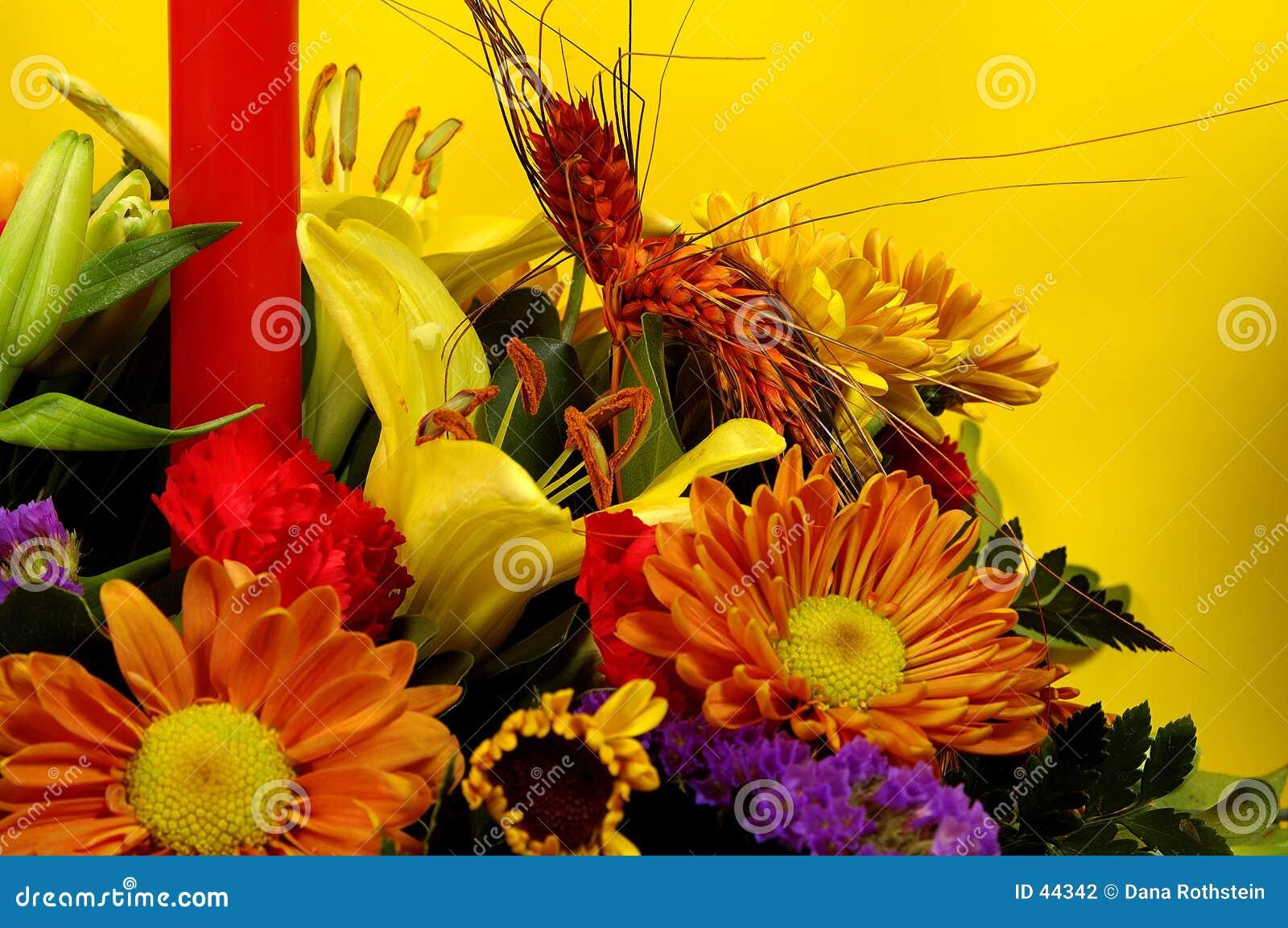 Feiertags-Blumen 2
