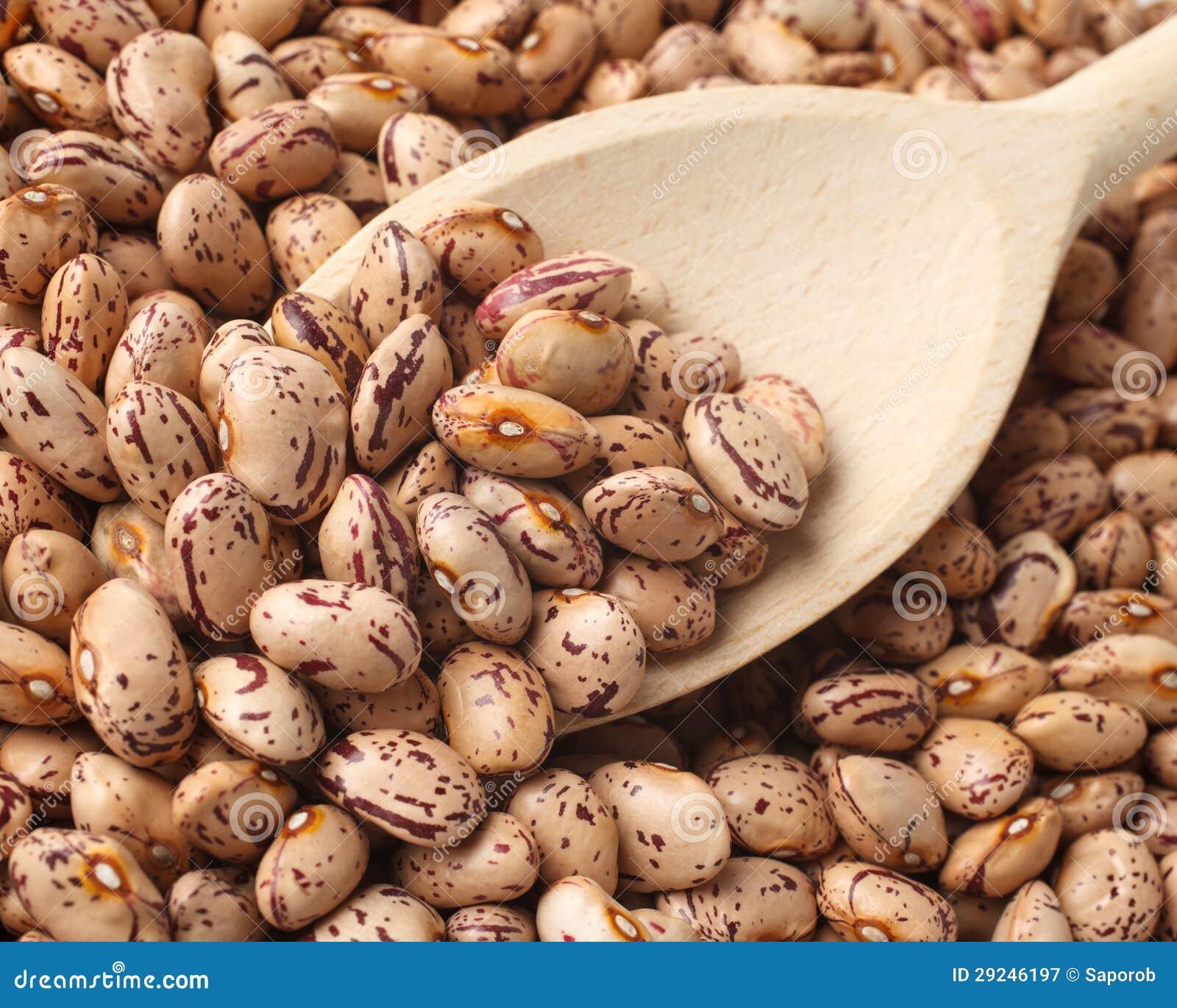 Download Feijões imagem de stock. Imagem de seco, cuisine, agricultura - 29246197