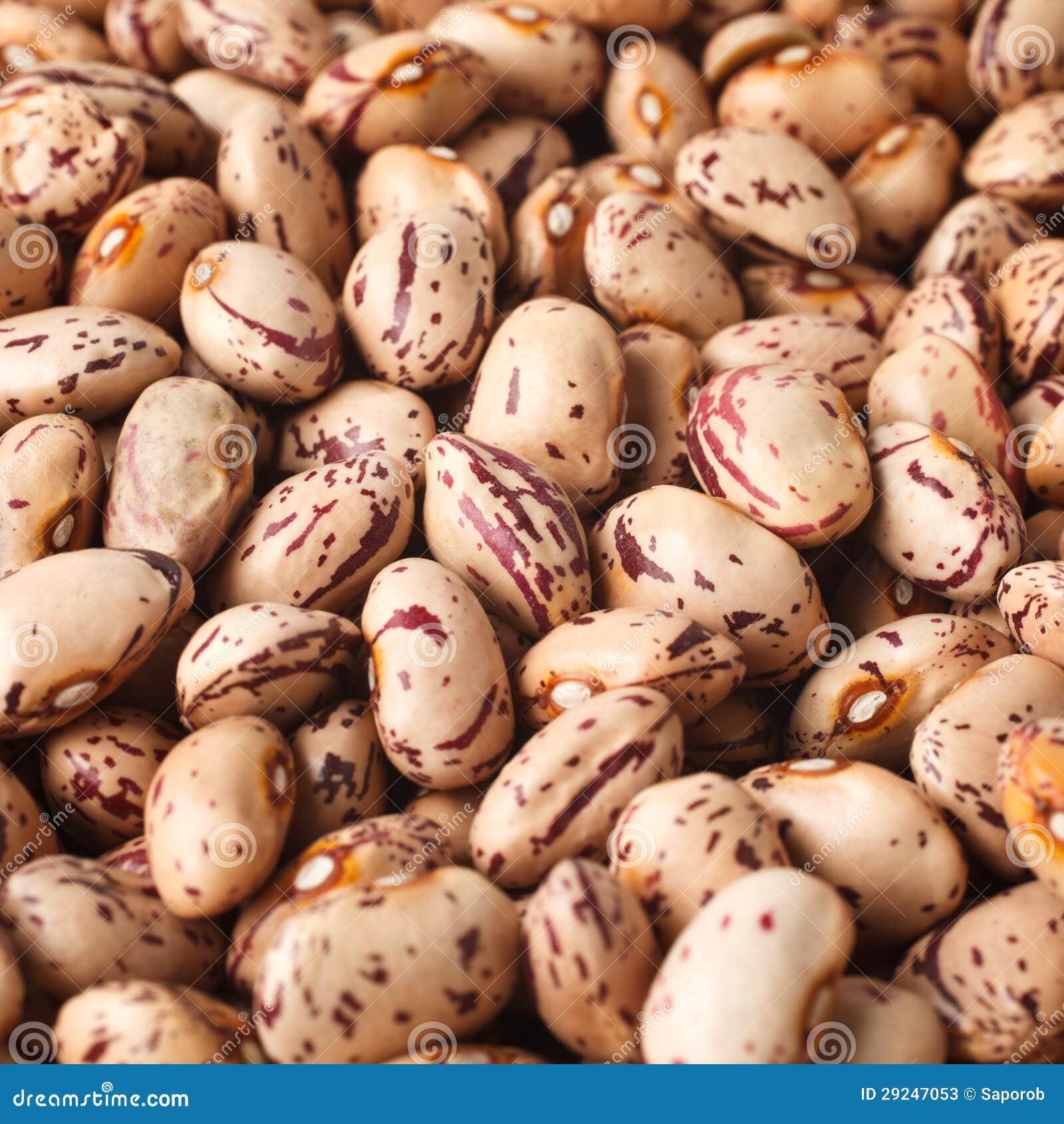 Download Feijões imagem de stock. Imagem de agricultura, fresco - 29247053