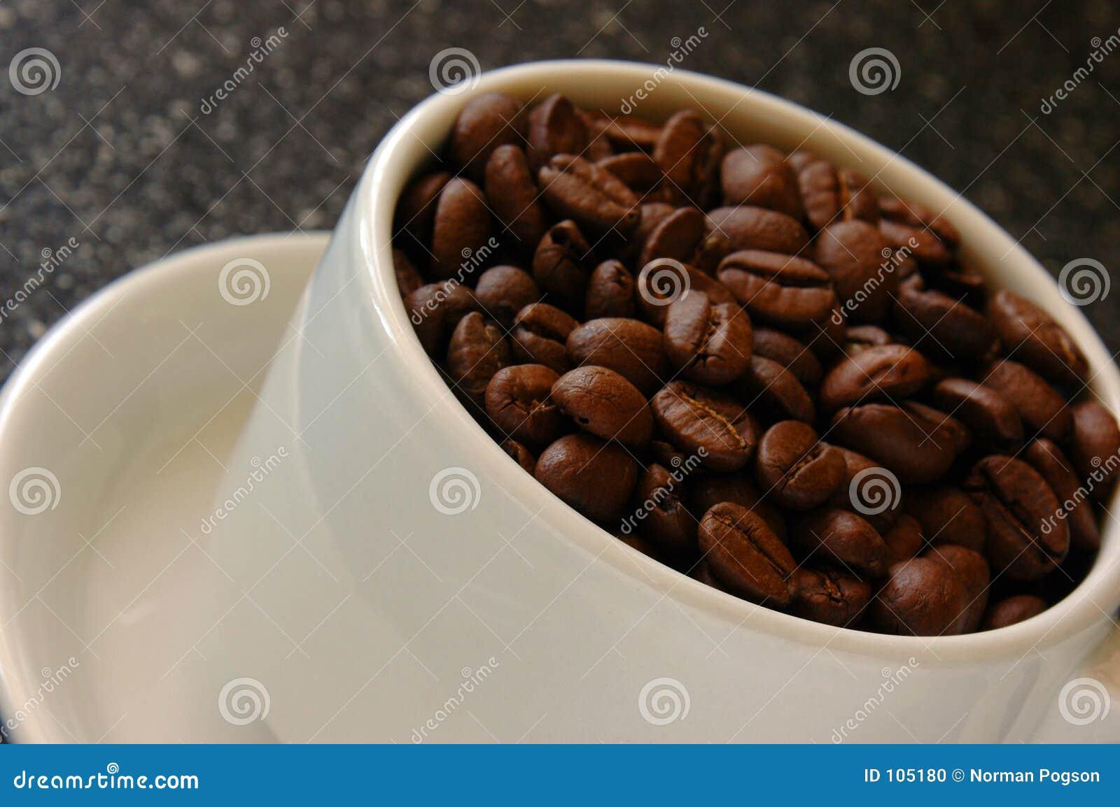 Feijões da chávena de café