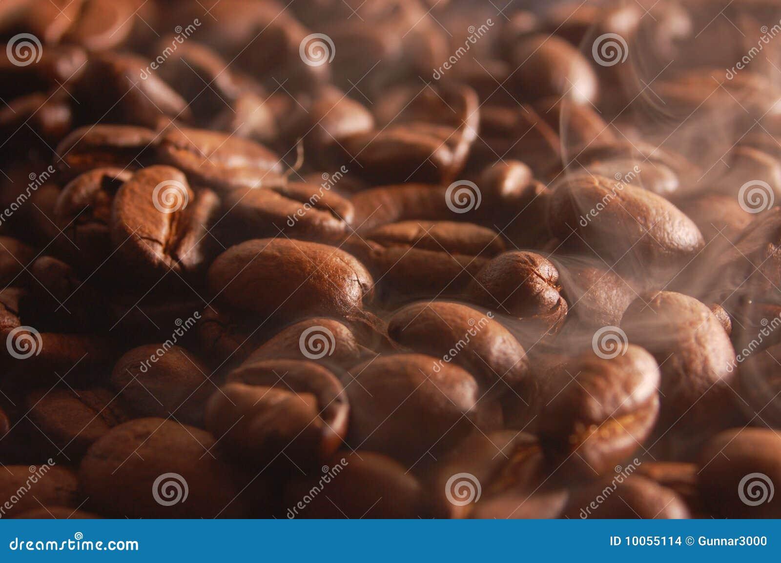 Feijões de café com vapor
