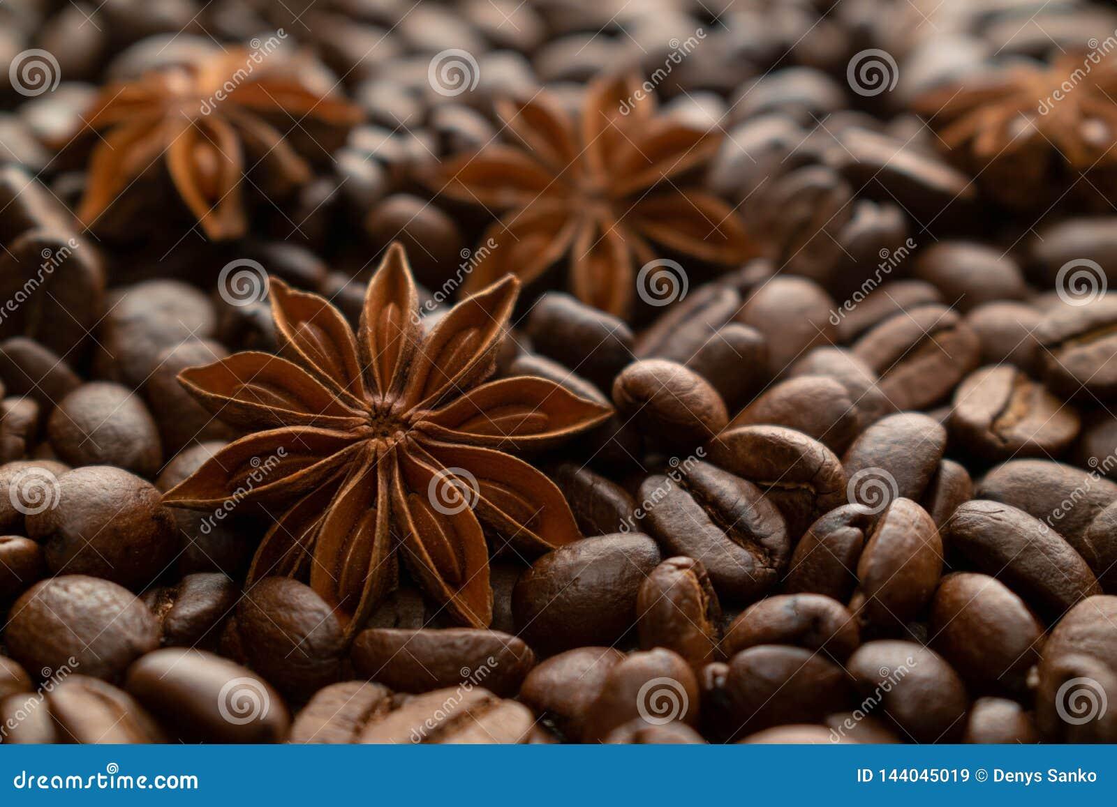 Feijões de café e anis de estrela