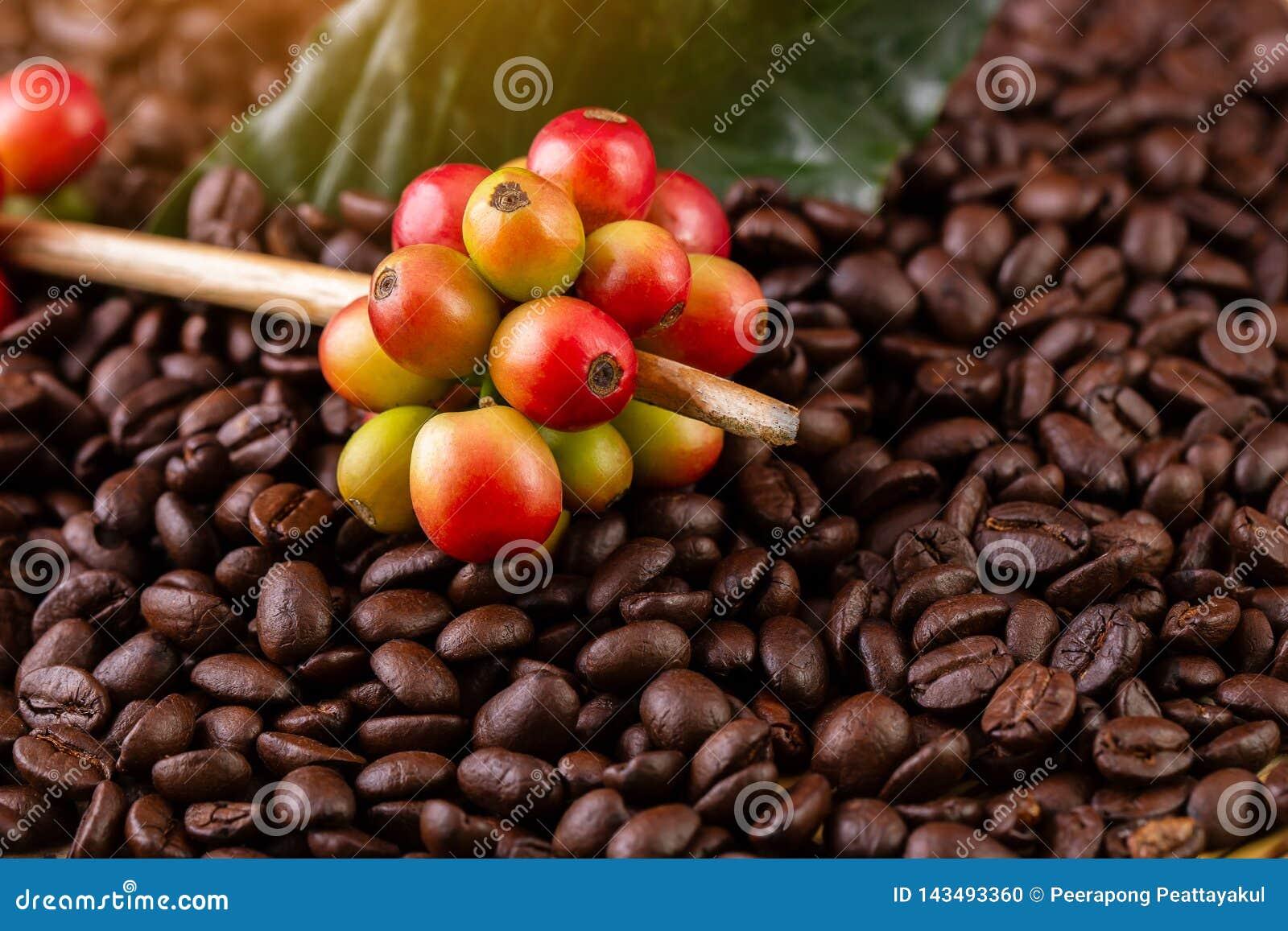 Feijões de café Em uma rotação de madeira do fundo