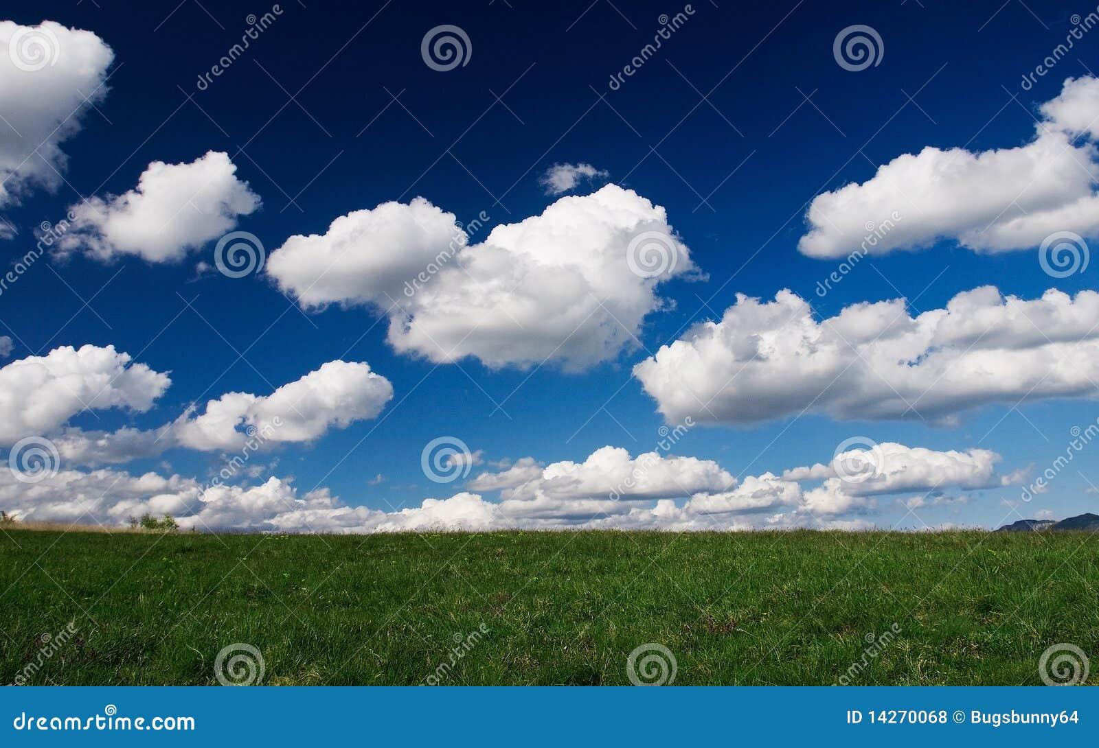 Feld der Wolken