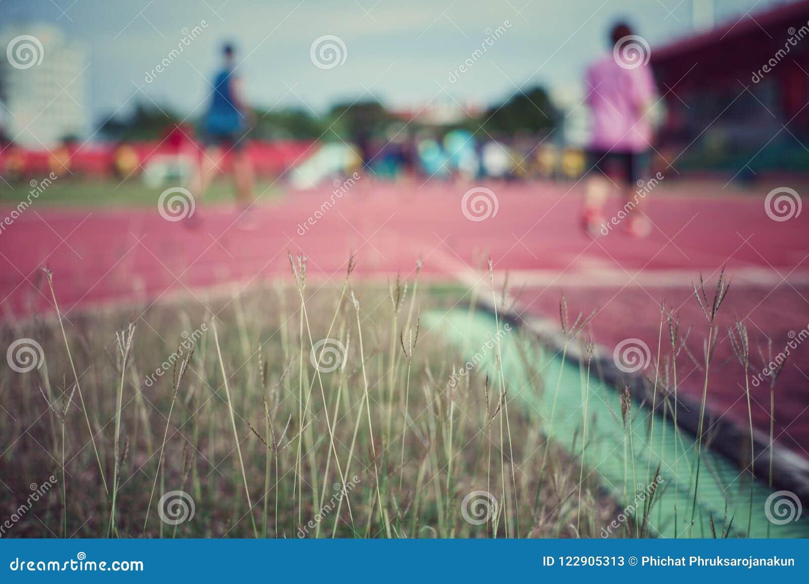 Feld des Unkrauts und des Grases im Stadion