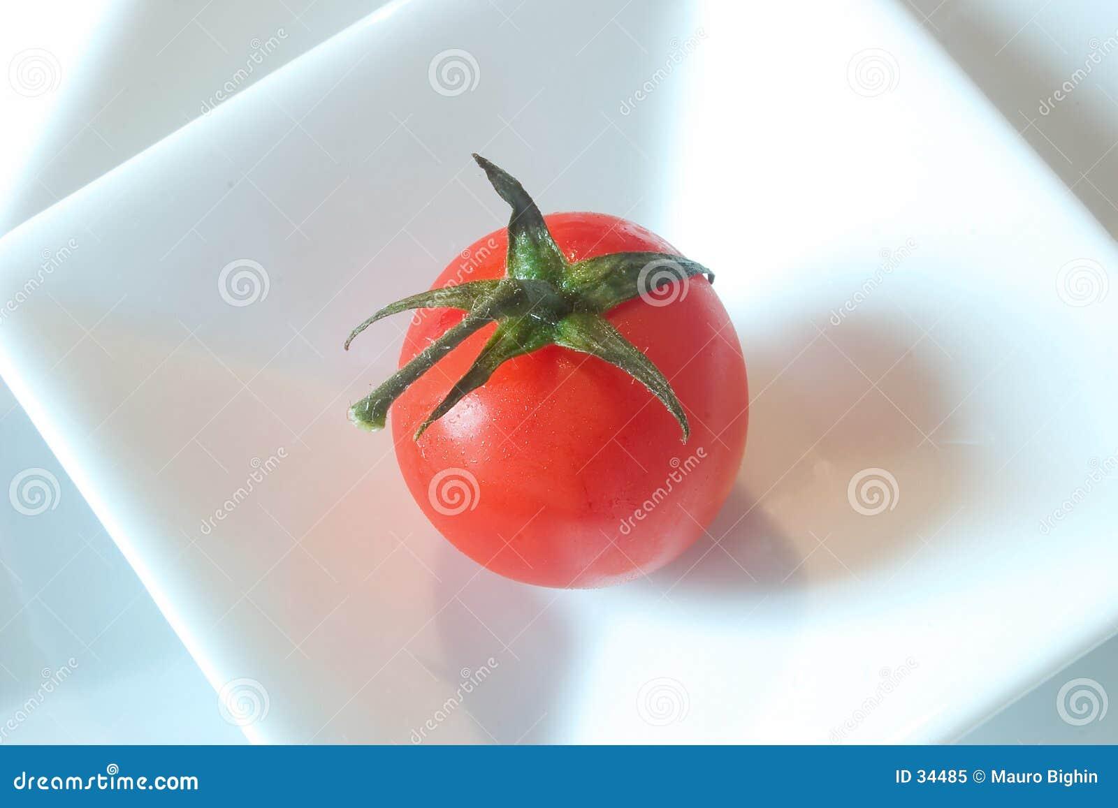 Feld Tomate