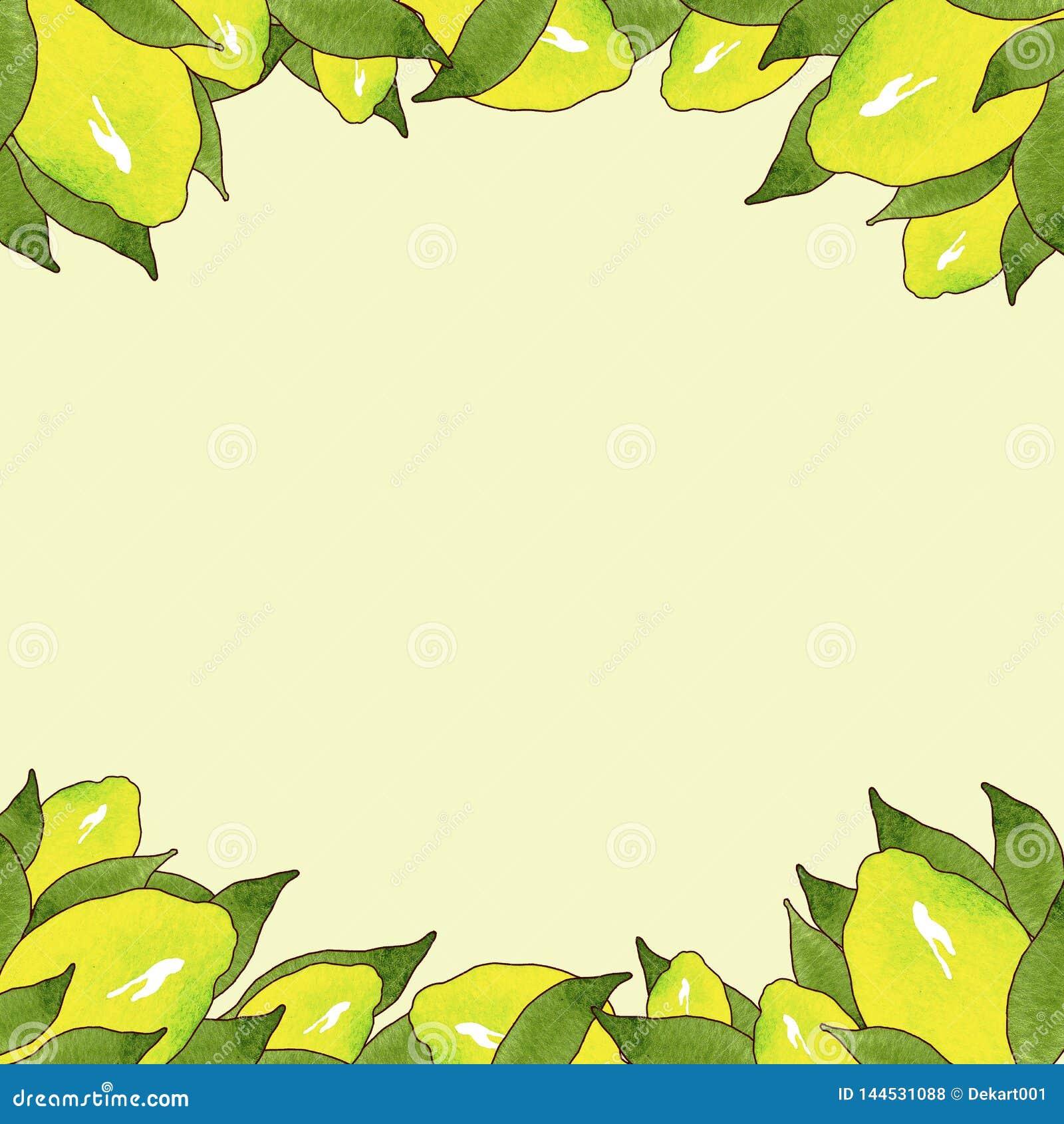 Feld von gelben Zitronenfrüchten mit den grünen Blättern lokalisiert auf gelbem Hintergrund in der schönen Art Handgemachte Abbil