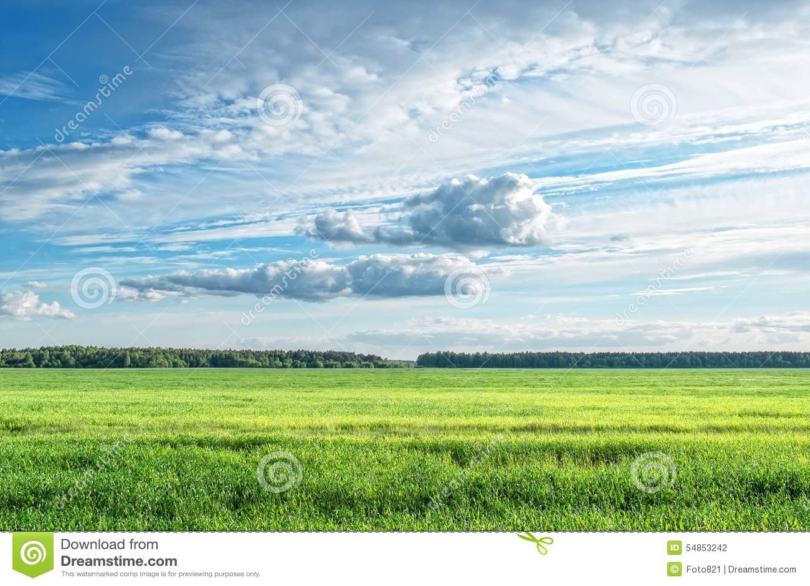 Feldwolken